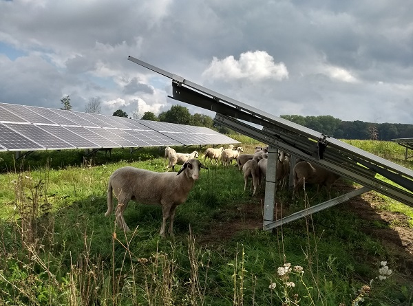 Constructieve zonneladder